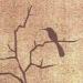 Аватар пользователя connectu