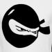 Аватар пользователя ninja
