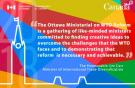 ВТО: реформировать нельзя сохранить? (damadilumax)