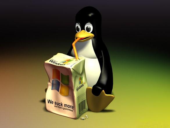 Четверть века Linux вот-вот победит Windows... ждём-с (Echinosor)
