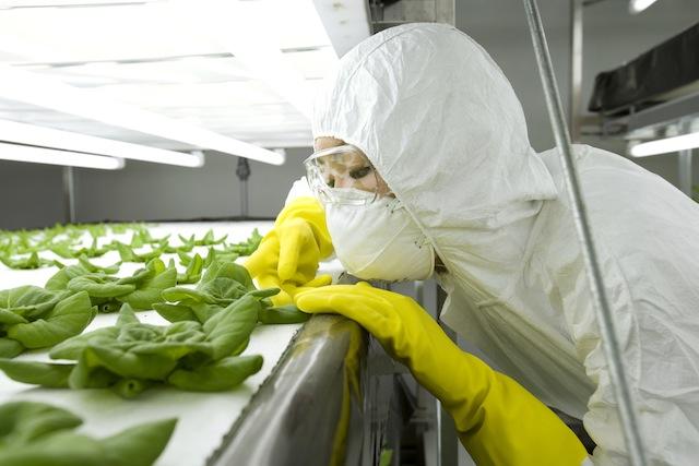 Мифы о ГМО (John Nada)