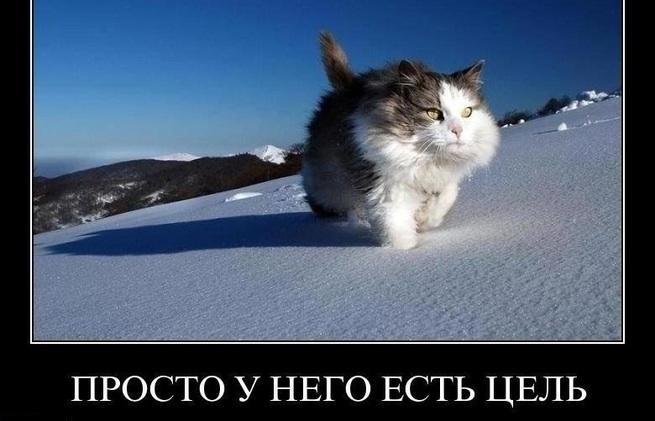 """""""Паруснику, у которого нет цели, ни один ветер не будет попутным"""" (s-groshev)"""