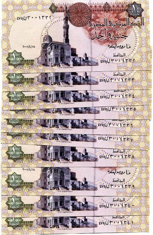 """Египет конфискует активы """"Братьев мусульман"""" на 60 млрд фунтов (skif-99)"""