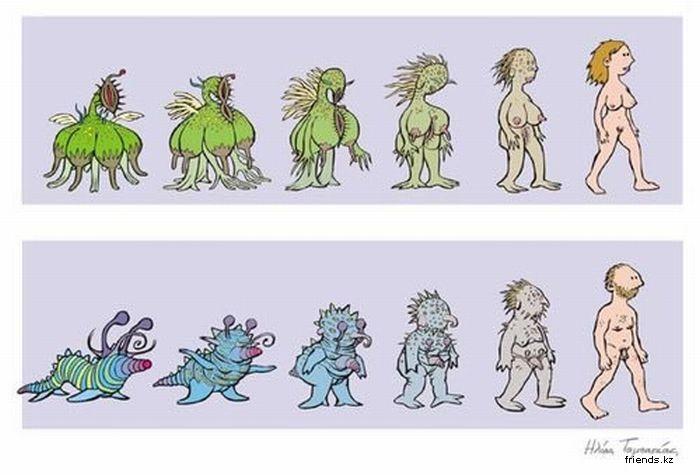 Важность веры в теории эволюции. (Vokk)