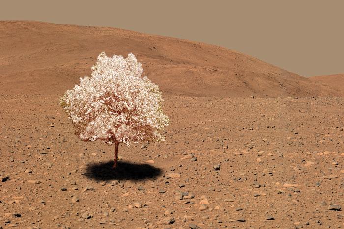 """Марс 1"" приземлился (Tinkle Bell)"
