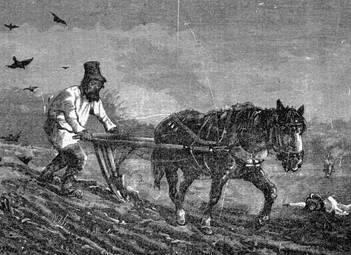 Елена Прудникова про сельское хозяйство Российской империи, часть вторая (Джельсомино)