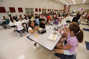 Школьные столовые спасут эту страну или невидимая рука рынка, как она выглядит в США (shinshilo)