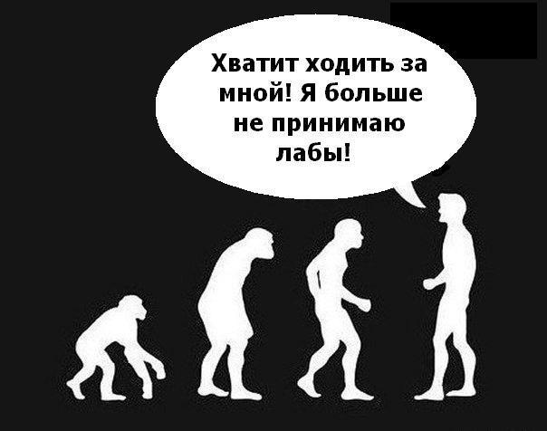 Опровержение теории эволюции, с её разоблачением. (kot1110)