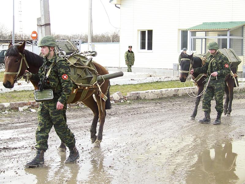 """На учениях в горах Кавказа лошадки обеспечили минометный удар """"из облаков"""" (Bledso)"""