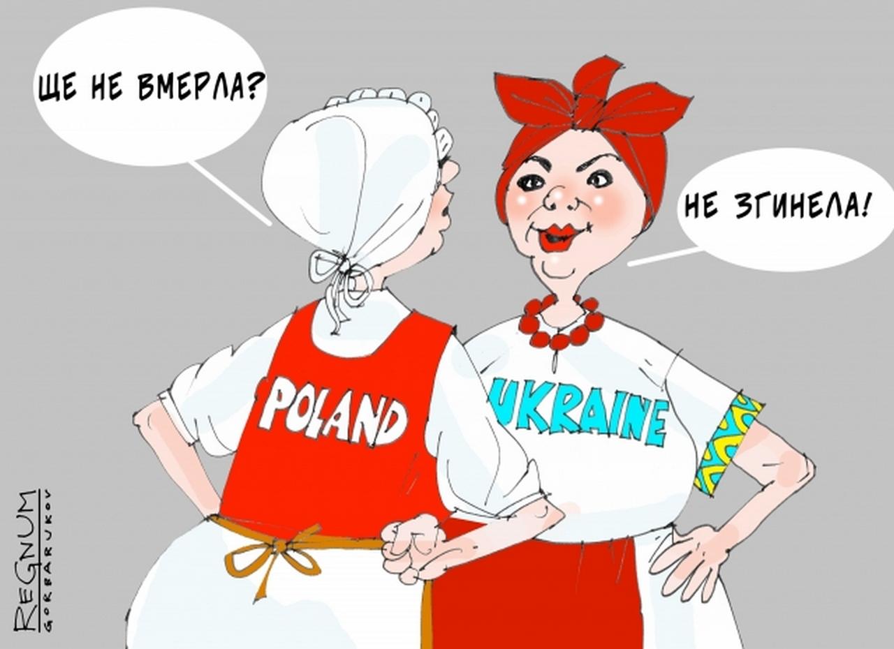 Коварный план Украины и Германии угрожает польской экономике (Bledso)