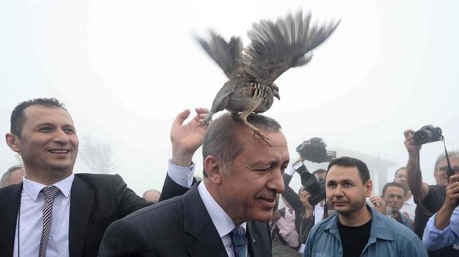 Распад неоосманской империи: Турция из экспортера революции трансформируется в её импортера (Болт)